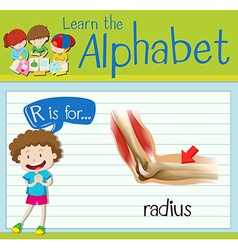 Flashcard letter R is for radius vector image vector image