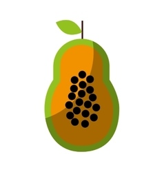 Papaya fresh fruit drawing icon vector