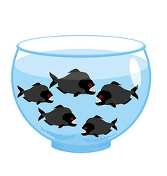 Aquarium with piranhas dangerous evil toothy fish vector