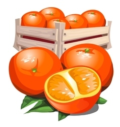 Box of fresh ripe orange with leaves vector image