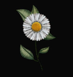colorful chamomile flower plant embroidery in vector image vector image