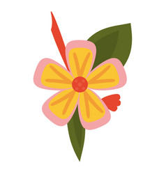 Freesia flower tropical icon vector