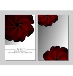 Beauty brochure red flower vector