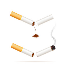 Broken realistic cigarette quit smoking vector