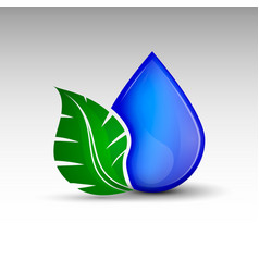 Drop with leaf vector