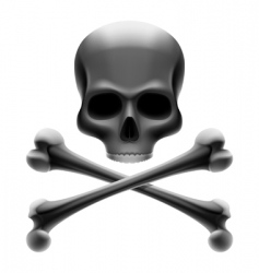 Skull with bones jolly roger vector