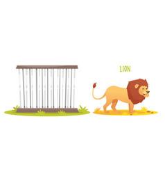 wild lion vector image