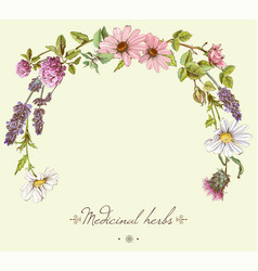 Herbal round frame vector