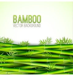 Bamboo background concept vector