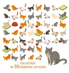 Cat cions vector image