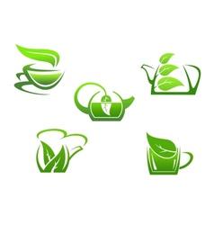 Green herbal tea cups vector image
