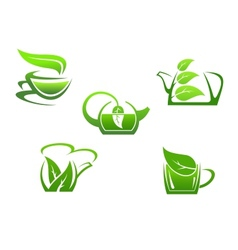 Green herbal tea cups vector image vector image