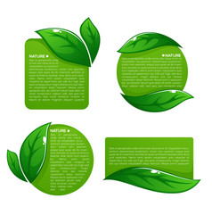 Nature tag templates collection of leaf labels vector