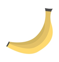 Ripe banana isolated vector image