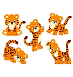 Tigers Set vector image