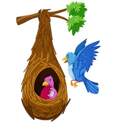 Bird hatching in nest and bird flying outside vector