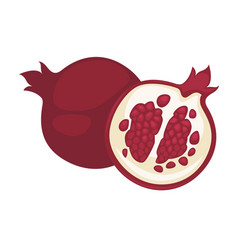pomegranate fruit isolated flat icon whole vector image