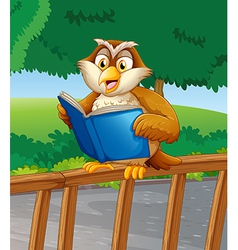 An owl reading a blue book vector image