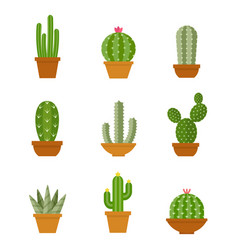 cactus icons in a flat style on a white background vector image