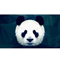 panda head polygon isolated vector image vector image