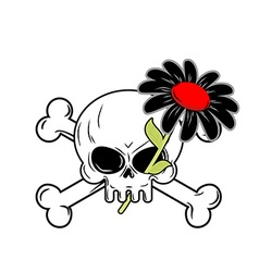 Flower of death and skull black daisy flower grows vector