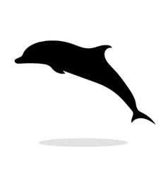 Dolphin sea animal black silhouette vector