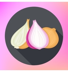 Onion flat design isolated vegetables vector