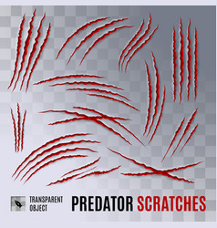 Predator scratches vector