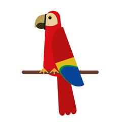 Scarlet macaw tropical bird vector