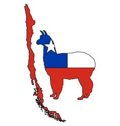 Chilean alpaca vector image