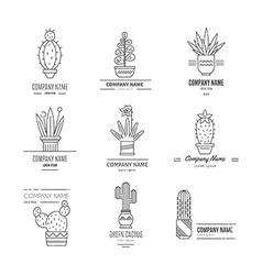 Logo with cactuses vector
