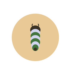 stylish icon in color circle insect caterpillar vector image