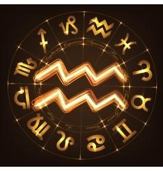 Zodiac sign Aquarius vector image