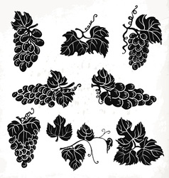 Collection of silhouette grapes leaves and vector
