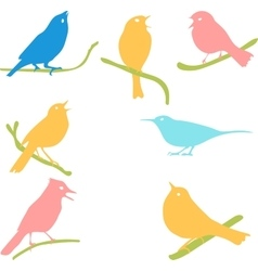 Bird silhouettes colored silhouettes vector