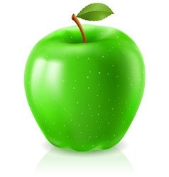 ripe green apple vector image