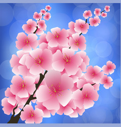 spring pink flowers vector image