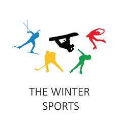The winter sports silhouettes vector
