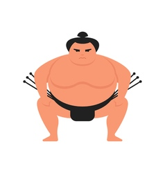 flat style of sumo wrestler vector image vector image