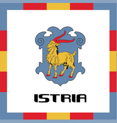 Official government ensigns of istria vector