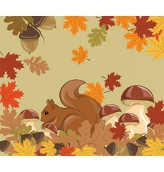 Autumn background with squirrel vector