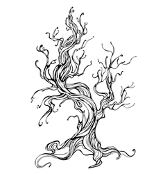 Contour of the Old Tree vector image vector image