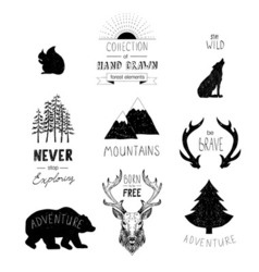 Hand drawn wild design elements Forest silhouettes vector image