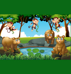 forest scene with bears and monkeys vector image