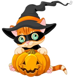 Cute halloween kitten vector