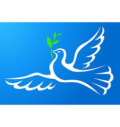 dove sky vector image