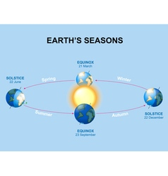 Earths seasons vector