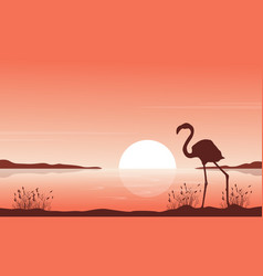 Silhouette of flamingo on lake scenery vector