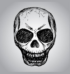skull hand drawing vector image