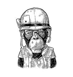 monkey in soldier helmet with glasses vintage vector image